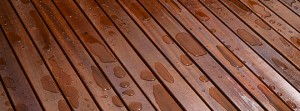 deck-staining-wood-stain-company-Charlotte-Paint-One
