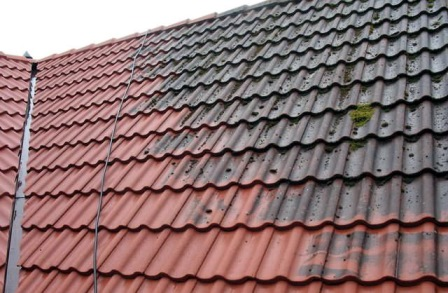Roof cleaning pro paint - Reasons get roof cleaned ...