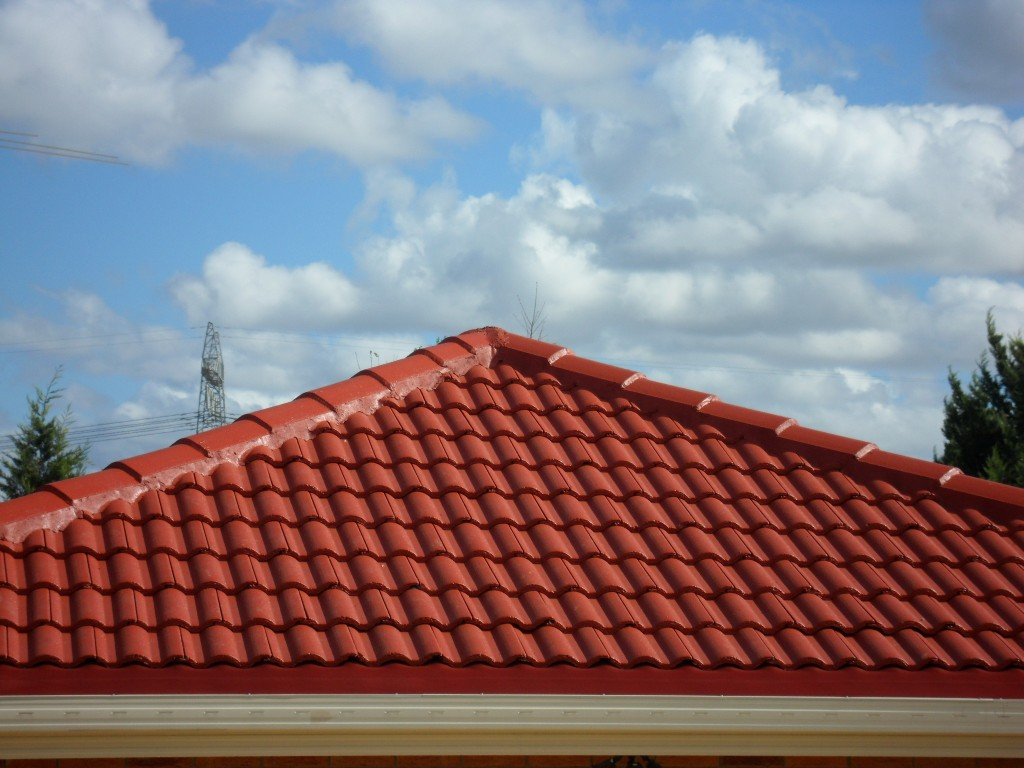Affordable Roof Paint